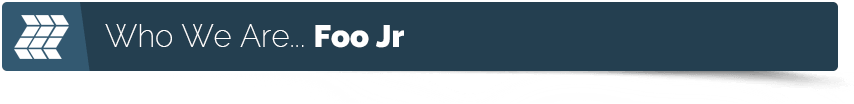 foojr web developer