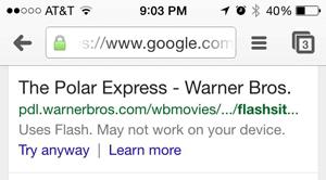 website uses flash